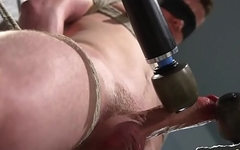 Edged stud blindfolded and punished