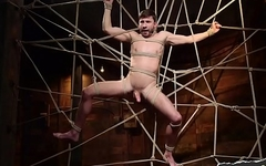 Bound bdsm gay in a web of pleasure