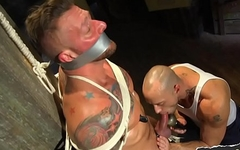 Tattooed muscle edged with toy and blowjob