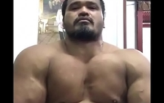 Massive thai bull [tags: muscle, bodybuilder, Asian, beefy, massive, thick, pecs, pec flexing, pec bouncing, chest, posing, flexing, hunk, muscular, off season]
